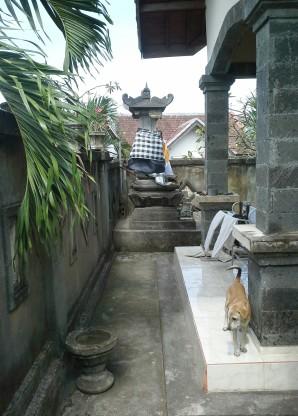 Balinese-backyard.jpg